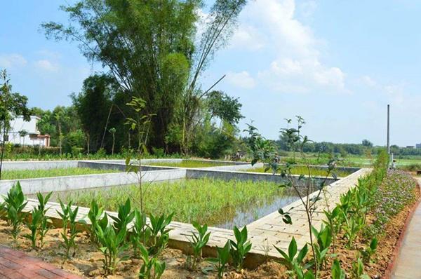 农村生活污水处理方法